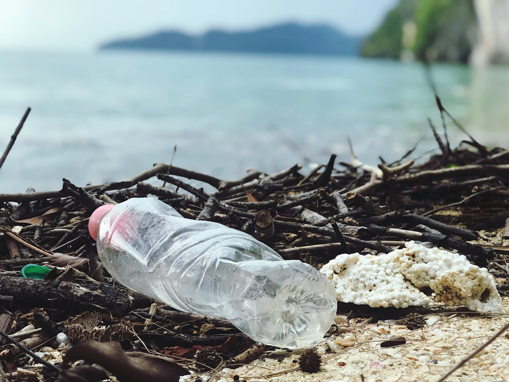tap water toxins